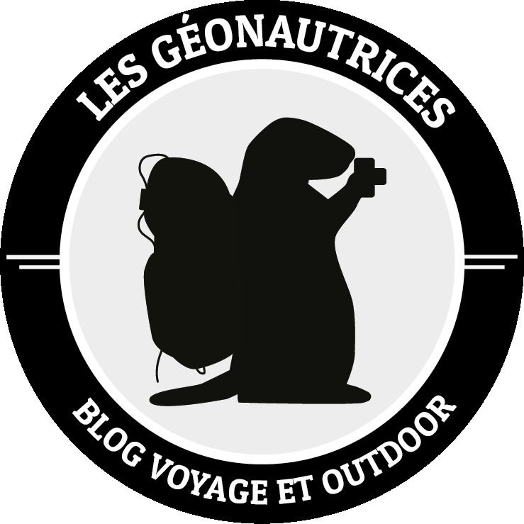 Logo Les Géonautrices